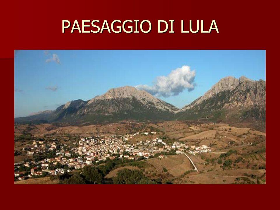PAESAGGIO DI LULA