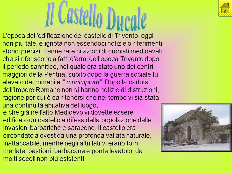 L'epoca dell'edificazione del castello di Trivento, oggi non più tale, é ignota non essendoci notizie o riferimenti storici precisi, tranne rare citaz