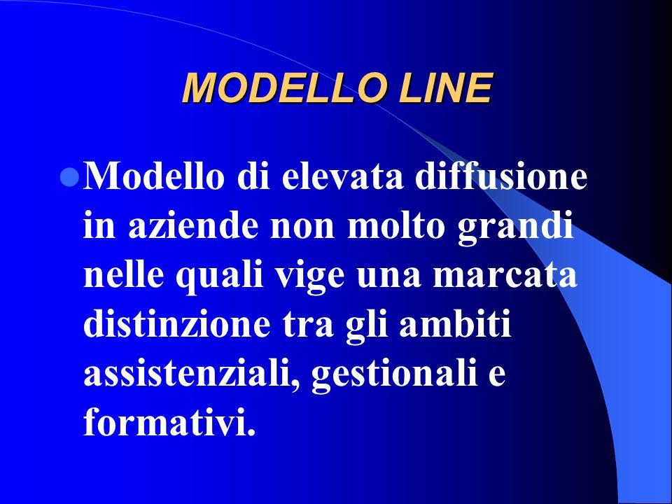Modelli organizzativi diffusi in Italia MODELLO LINE MODELLO DIVISIONALE MODELLO LINE E STAFF MODELLO PER PROGETTO MODELLO A MATRICE