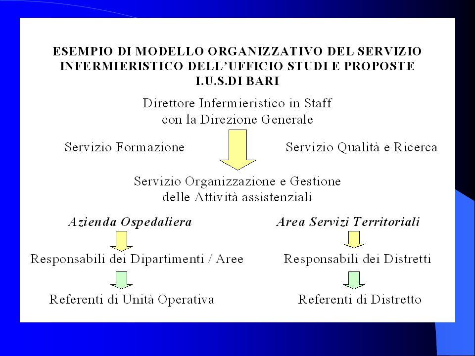 4. coerenza dei programmi di aggiornamento e di sviluppo professionale 5. valutazione della performance assistenziale 6. attuazione dellorganizzazione