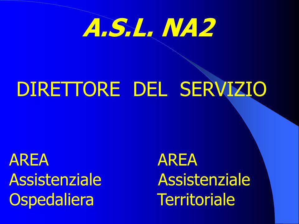 A.S.L. NA2 Anno di attivazione:2004; Modello organizzativo:Line e Staff Struttura aziendale:n.1 D.E.A.; n.3 P.S.A.; n.9 Distretti