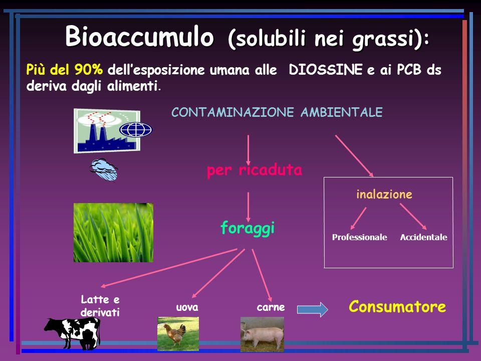 Bioaccumulo (solubili nei grassi): Bioaccumulo (solubili nei grassi): Più del 90% dellesposizione umana alle DIOSSINE e ai PCB ds deriva dagli aliment