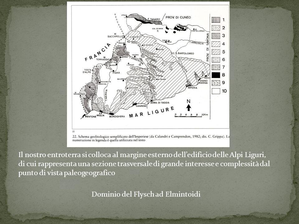 Il nostro entroterra si colloca al margine esterno delledificio delle Alpi Liguri, di cui rappresenta una sezione trasversale di grande interesse e co
