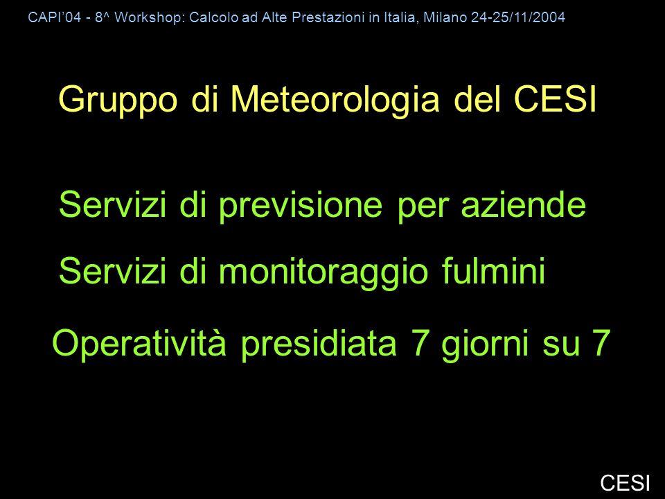 CAPI04 - 8^ Workshop: Calcolo ad Alte Prestazioni in Italia, Milano 24-25/11/2004 CESI Gruppo di Meteorologia del CESI Servizi di previsione per aziende Servizi di monitoraggio fulmini Operatività presidiata 7 giorni su 7