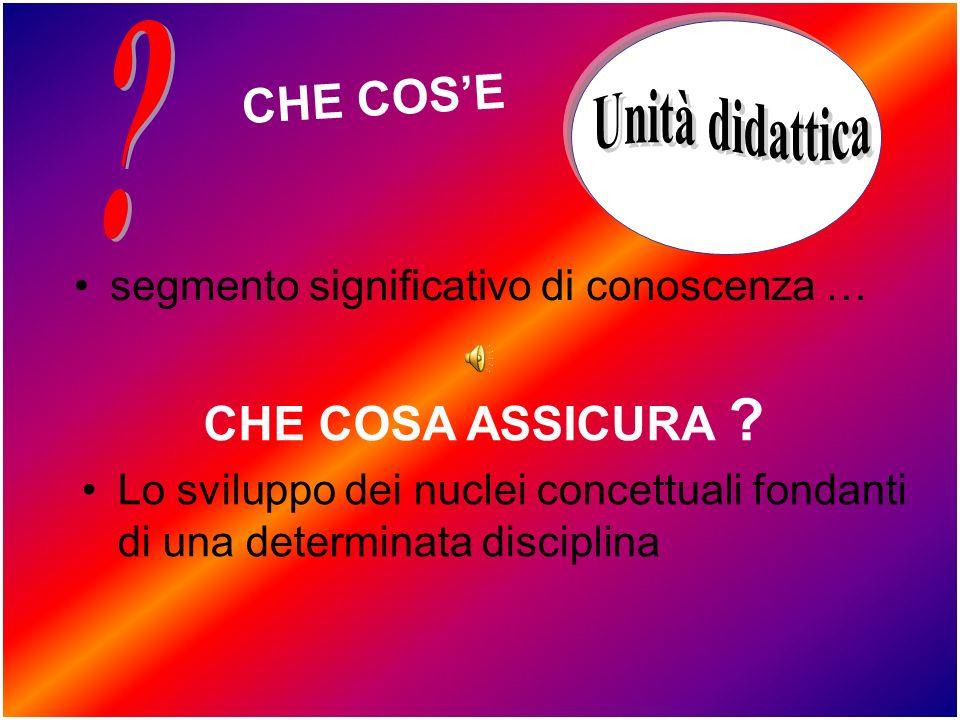 CHE COSE segmento significativo di conoscenza … CHE COSA ASSICURA .