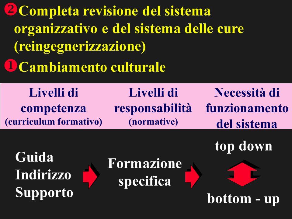 Completa revisione del sistema organizzativo e del sistema delle cure (reingegnerizzazione) Cambiamento culturale Guida Indirizzo Supporto Formazione specifica top down bottom - up Livelli di competenza (curriculum formativo) Livelli di responsabilità (normative) Necessità di funzionamento del sistema