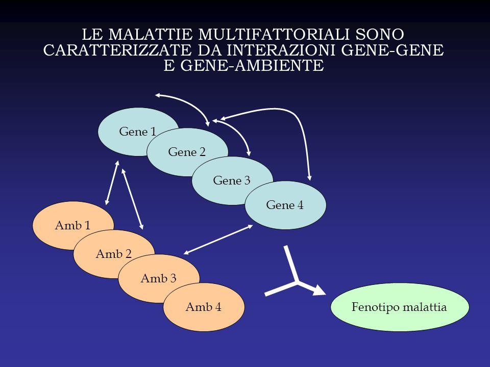 LE MALATTIE MULTIFATTORIALI SONO CARATTERIZZATE DA INTERAZIONI GENE-GENE E GENE-AMBIENTE Gene 1 Gene 2 Gene 3 Gene 4 Amb 1 Amb 2 Amb 3 Amb 4Fenotipo m