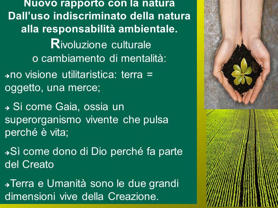 Nuovo rapporto con la natura Dalluso indiscriminato della natura alla responsabilità ambientale. R ivoluzione culturale o cambiamento di mentalità: no