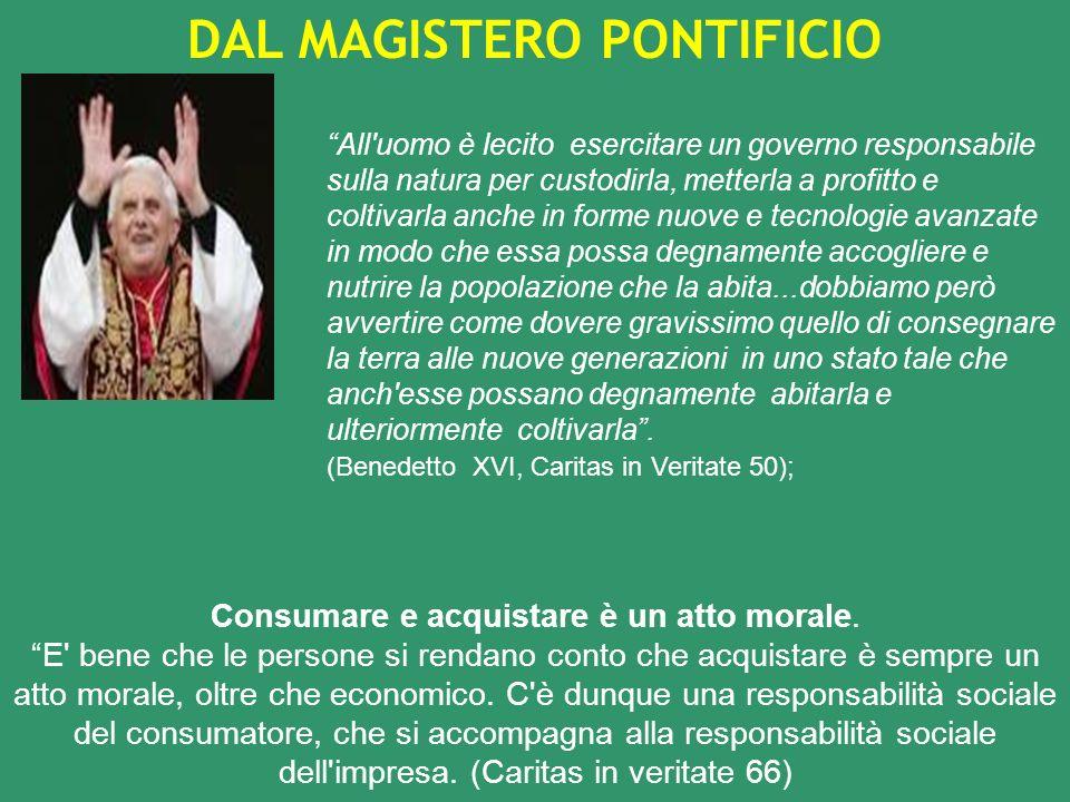 Nuovo rapporto con la natura Dalluso indiscriminato della natura alla responsabilità ambientale.