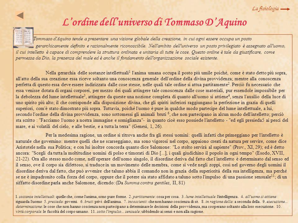 Lordine delluniverso di Tommaso DAquino Tommaso d'Aquino tende a presentare una visione globale della creazione, in cui ogni essere occupa un posto ge