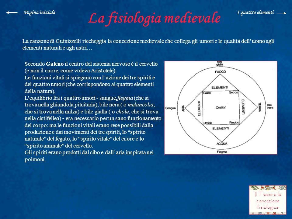 La fisiologia medievale La canzone di Guinizzelli riecheggia la concezione medievale che collega gli umori e le qualità delluomo agli elementi natural