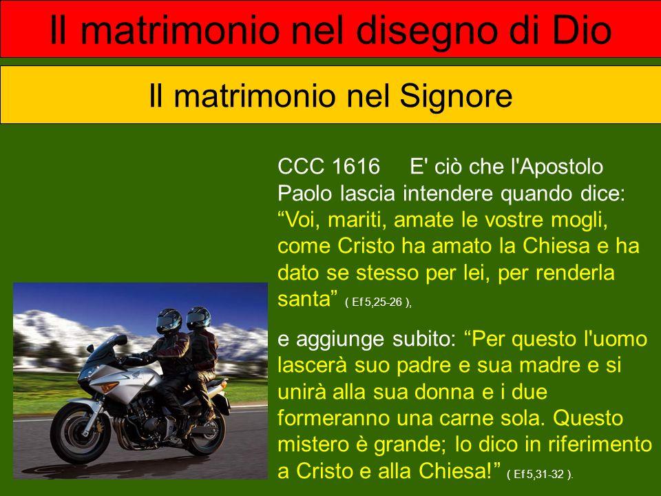 CCC 1617 Tutta la vita cristiana porta il segno dell amore sponsale di Cristo e della Chiesa.