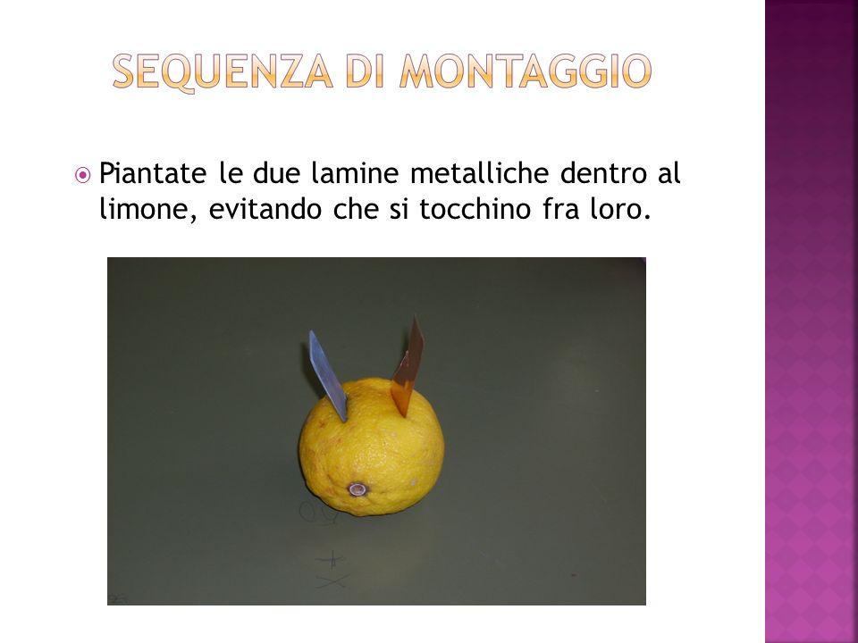 Piantate le due lamine metalliche dentro al limone, evitando che si tocchino fra loro.