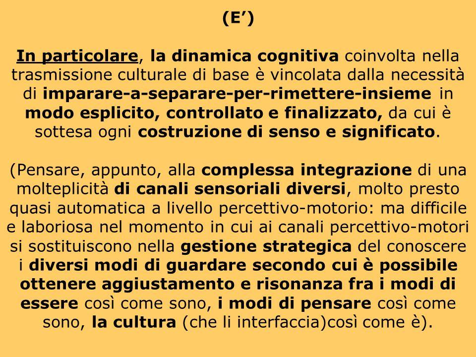 (E) In particolare, la dinamica cognitiva coinvolta nella trasmissione culturale di base è vincolata dalla necessità di imparare-a-separare-per-rimettere-insieme in modo esplicito, controllato e finalizzato, da cui è sottesa ogni costruzione di senso e significato.