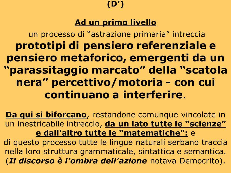 (D) Le forme di pensiero via via più astratte sono basate su due famiglie di metafore : quella che corrisponde a trattare le correlazioni osservabili con modellizzazione (come se…) percettivo-motoria (in termini di quasi-oggetti, quasi-fenomeni, quasi-eventi, quasi-contesti, e così via); e quella che corrisponde a trattare le forme astratte che definiscono le correlazioni in termini di una modellizzazione (come se …), ancora oggettuale, basata sulle correlazioni spaziotemporali.
