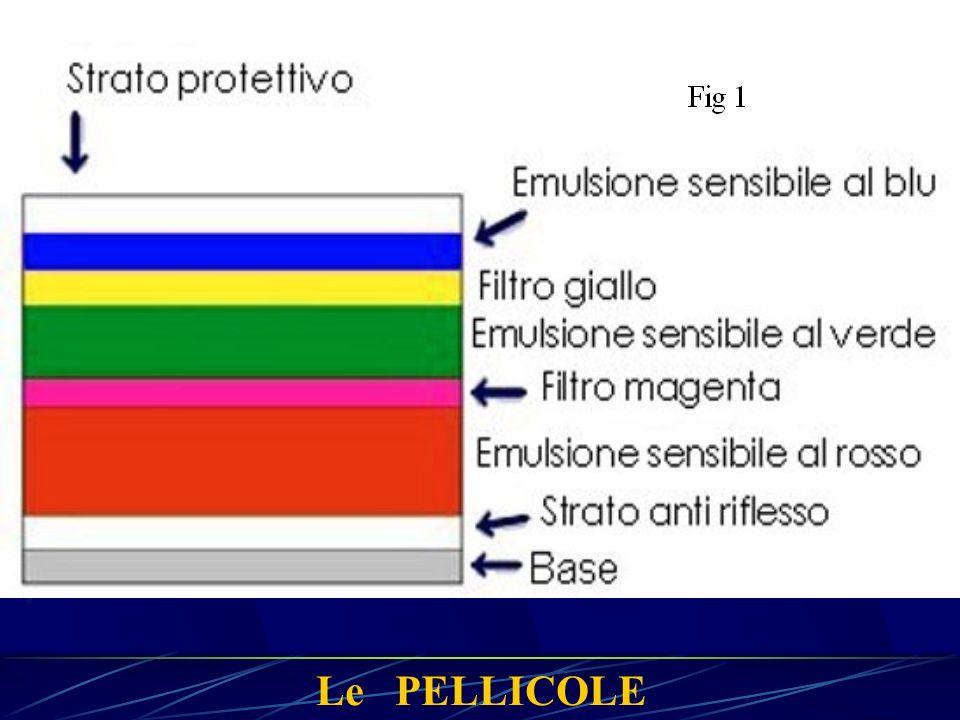 Le PELLICOLE