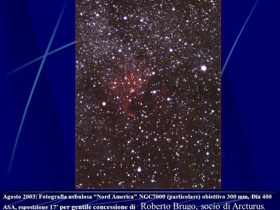 Agosto 2003: Fotografia nebulosa Nord America NGC7000 (particolare) obiettivo 300 mm, Dia 400 ASA, esposizione 17 per gentile concessione di Roberto B
