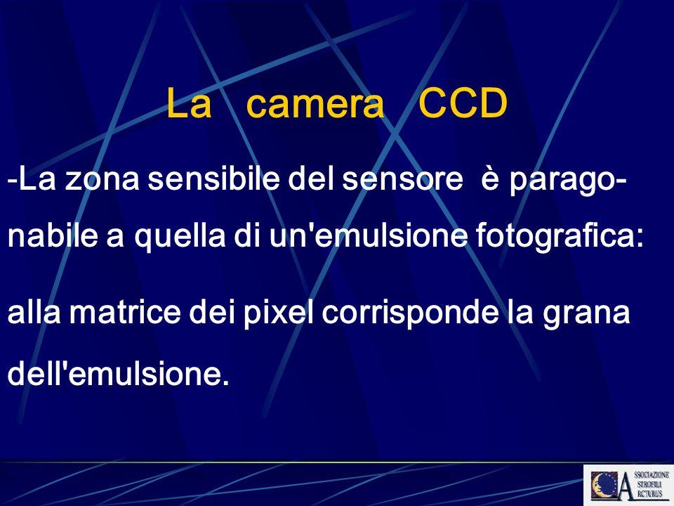 La camera CCD -La zona sensibile del sensore è parago- nabile a quella di un'emulsione fotografica: alla matrice dei pixel corrisponde la grana dell'e