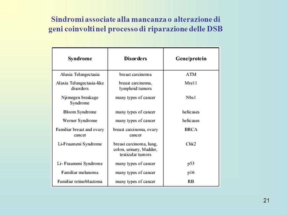 21 Sindromi associate alla mancanza o alterazione di geni coinvolti nel processo di riparazione delle DSB