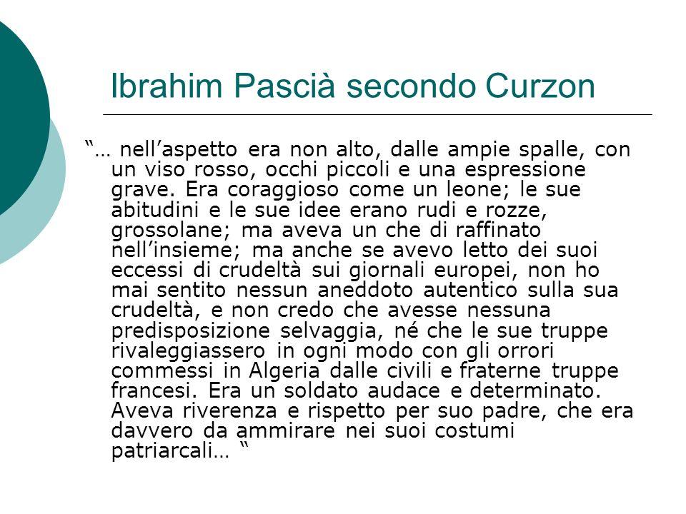 Ibrahim Pascià secondo Curzon … nellaspetto era non alto, dalle ampie spalle, con un viso rosso, occhi piccoli e una espressione grave. Era coraggioso
