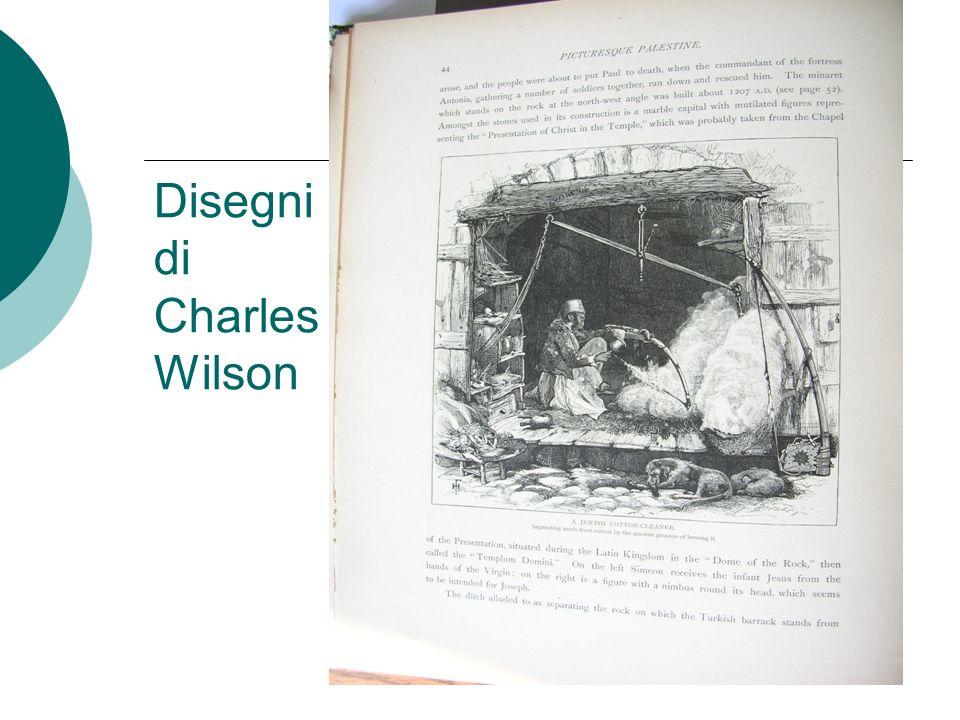 Disegni di Charles Wilson
