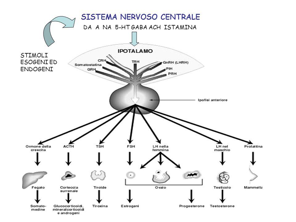 SISTEMA NERVOSO CENTRALE STIMOLI ESOGENI ED ENDOGENI DA A NA 5-HT GABA ACH ISTAMINA
