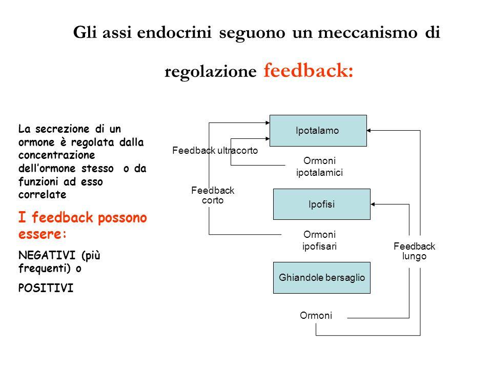 Feedback ultracorto La secrezione di un ormone è regolata dalla concentrazione dellormone stesso o da funzioni ad esso correlate I feedback possono es