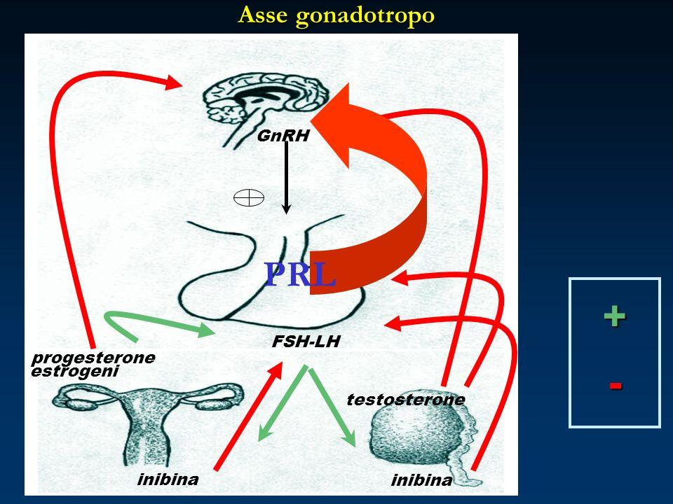 Asse gonadotropo progesterone testosterone GnRH FSH-LH estrogeni inibina +- PRL