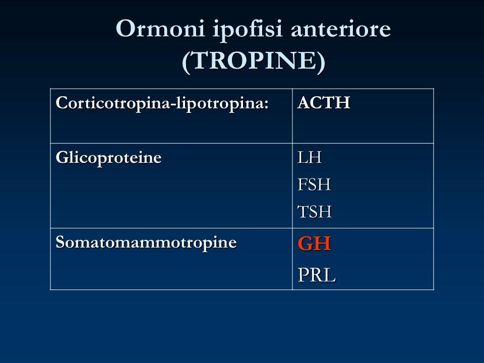 Corticotropina-lipotropina:ACTH GlicoproteineLHFSHTSH SomatomammotropineGHPRL Ormoni ipofisi anteriore (TROPINE)