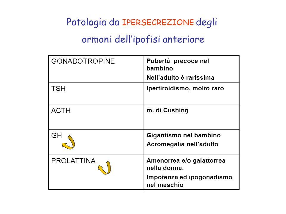 Patologia da IPERSECREZIONE degli ormoni dellipofisi anteriore GONADOTROPINE Pubertà precoce nel bambino Nelladulto è rarissima TSH Ipertiroidismo, mo