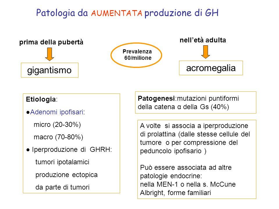 Patologia da AUMENTATA produzione di GH nelletà adulta prima della pubertà gigantismo acromegalia Etiologia: Adenomi ipofisari: micro (20-30%) macro (