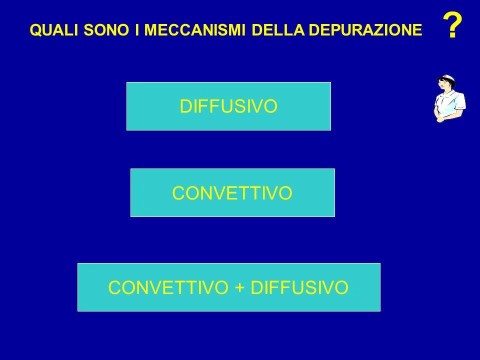 CONVETTIVO DIFFUSIVO CONVETTIVO + DIFFUSIVO QUALI SONO I MECCANISMI DELLA DEPURAZIONE ?