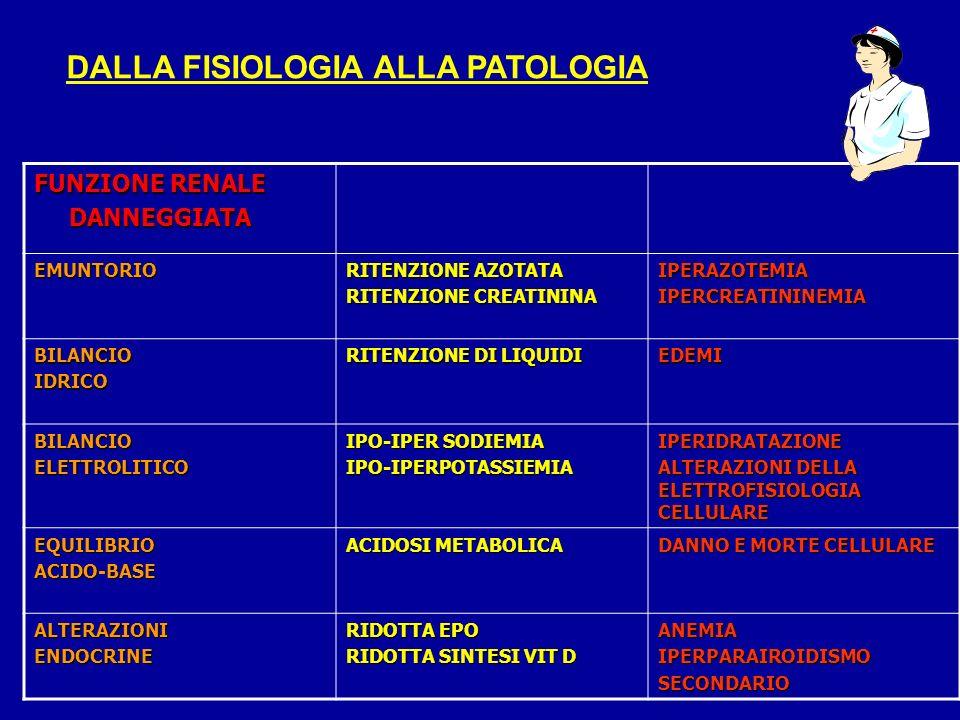 DALLA FISIOLOGIA ALLA PATOLOGIA FUNZIONE RENALE DANNEGGIATA DANNEGGIATA EMUNTORIO RITENZIONE AZOTATA RITENZIONE CREATININA IPERAZOTEMIAIPERCREATININEM