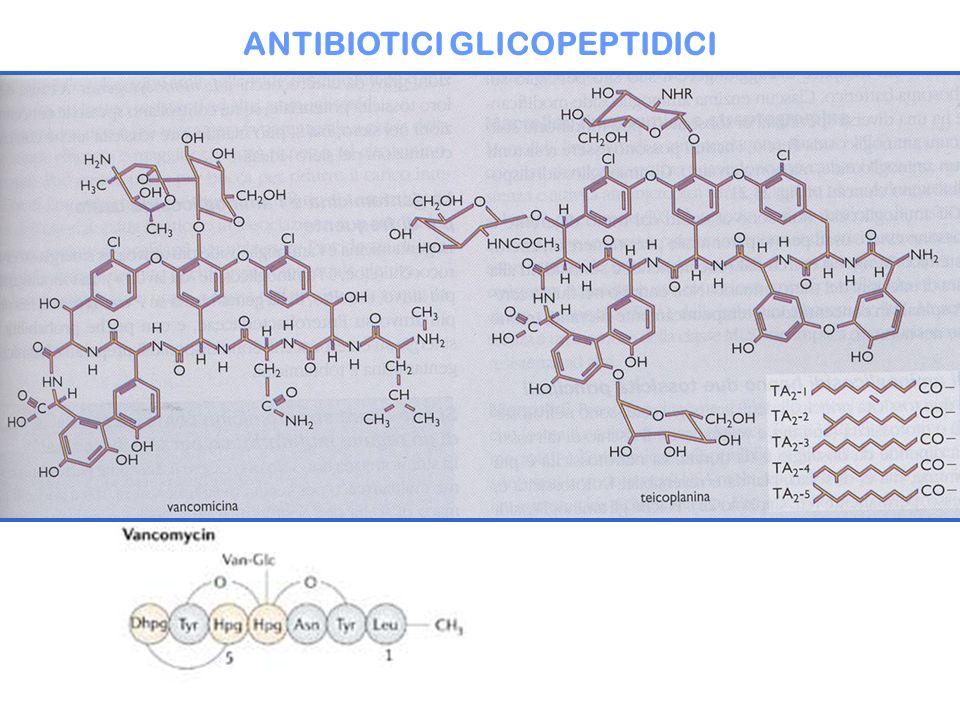 ANTIBIOTICI GLICOPEPTIDICI
