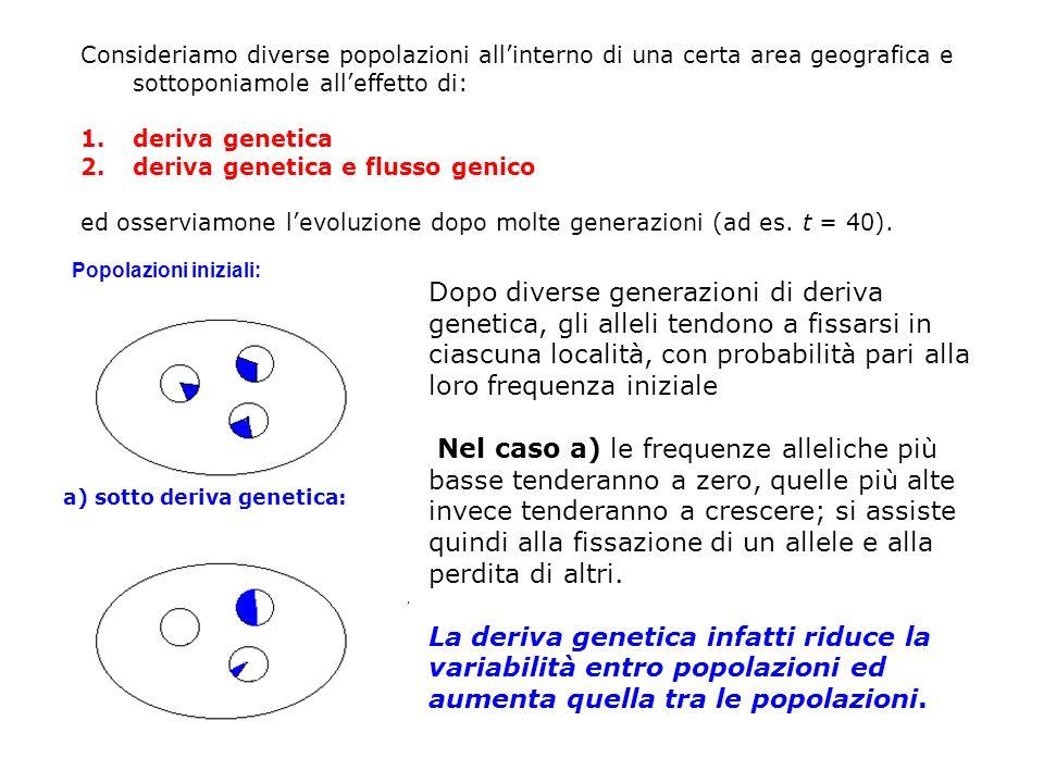 Popolazioni iniziali: Consideriamo diverse popolazioni allinterno di una certa area geografica e sottoponiamole alleffetto di: 1.deriva genetica 2.der