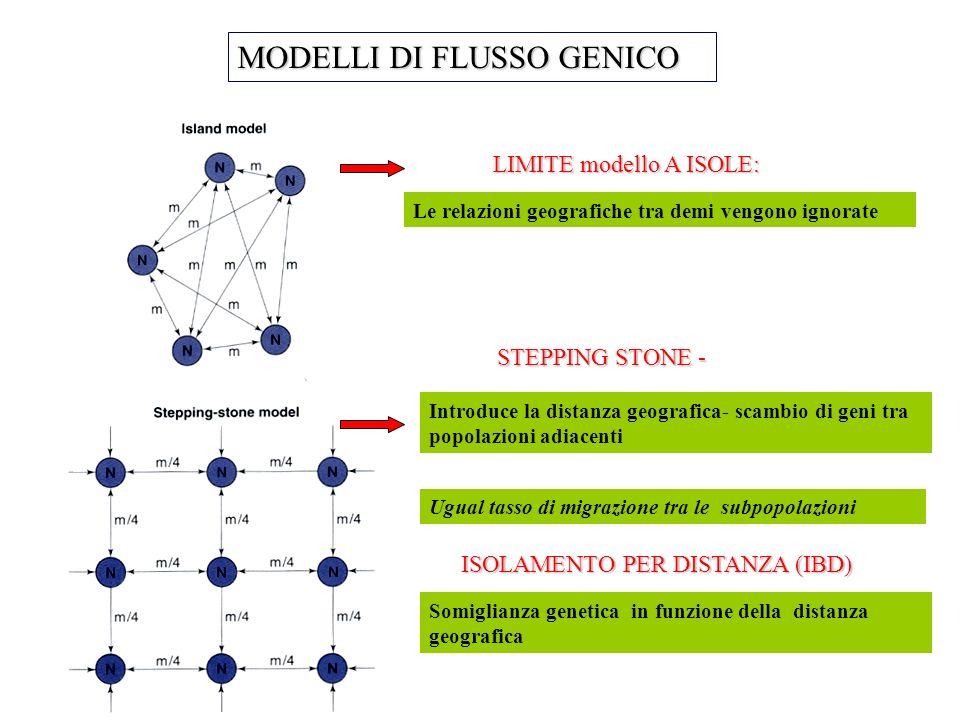 MODELLI DI FLUSSO GENICO Le relazioni geografiche tra demi vengono ignorate Ugual tasso di migrazione tra le subpopolazioni LIMITE modello A ISOLE: In