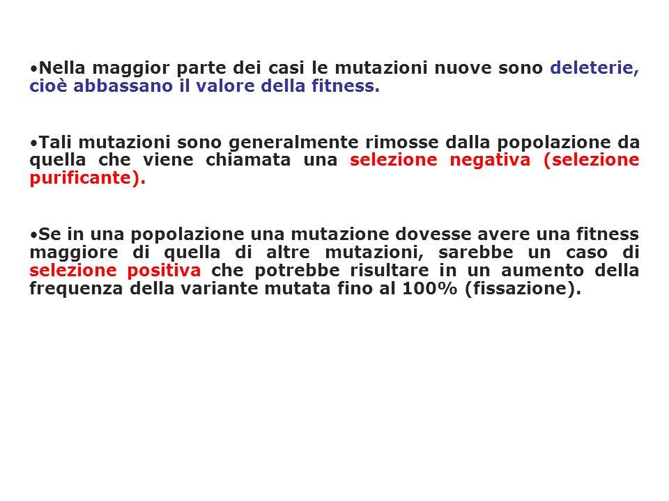 Nella maggior parte dei casi le mutazioni nuove sono deleterie, cioè abbassano il valore della fitness. Tali mutazioni sono generalmente rimosse dalla