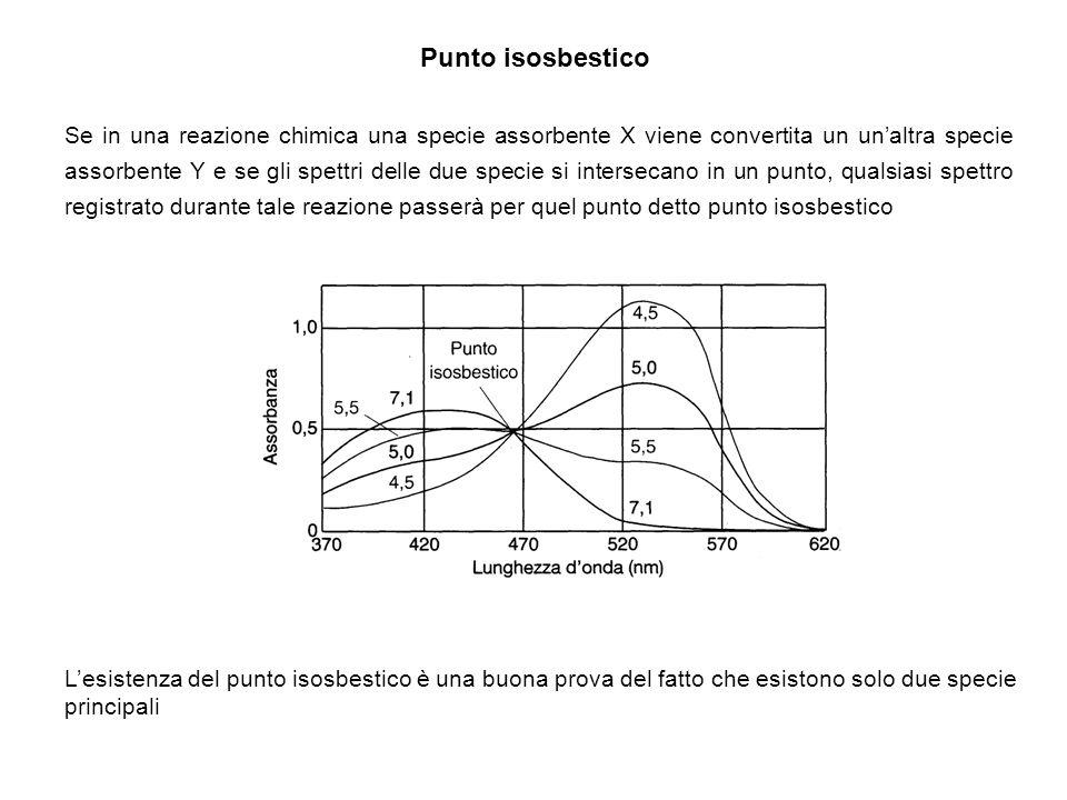 Punto isosbestico Se in una reazione chimica una specie assorbente X viene convertita un unaltra specie assorbente Y e se gli spettri delle due specie