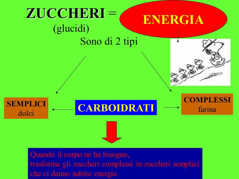 Consiglio delle Donne - Senigallia - ZUCCHERI ZUCCHERI = (glucidi) ENERGIA Sono di 2 tipi SEMPLICI dolci COMPLESSI farina CARBOIDRATI Quando il corpo