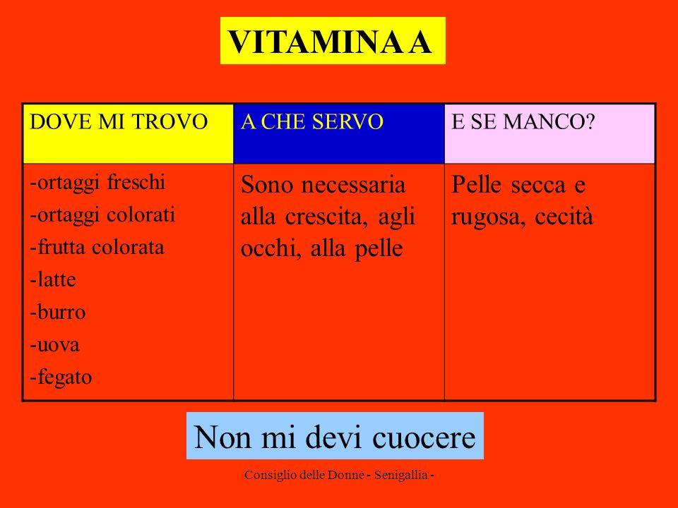Consiglio delle Donne - Senigallia - VITAMINA A DOVE MI TROVOA CHE SERVOE SE MANCO? -ortaggi freschi -ortaggi colorati -frutta colorata -latte -burro