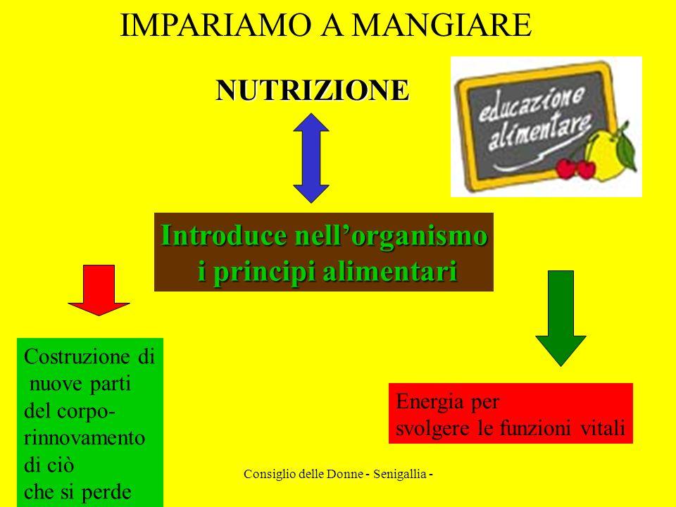 Consiglio delle Donne - Senigallia - IMPARIAMO A MANGIARENUTRIZIONE Introduce nellorganismo i principi alimentari i principi alimentari Costruzione di
