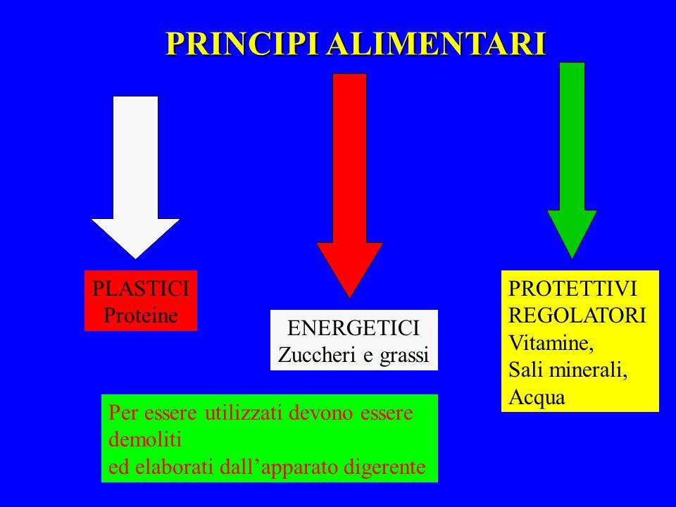 Consiglio delle Donne - Senigallia - PRINCIPI ALIMENTARI PLASTICI Proteine ENERGETICI Zuccheri e grassi PROTETTIVI REGOLATORI Vitamine, Sali minerali,