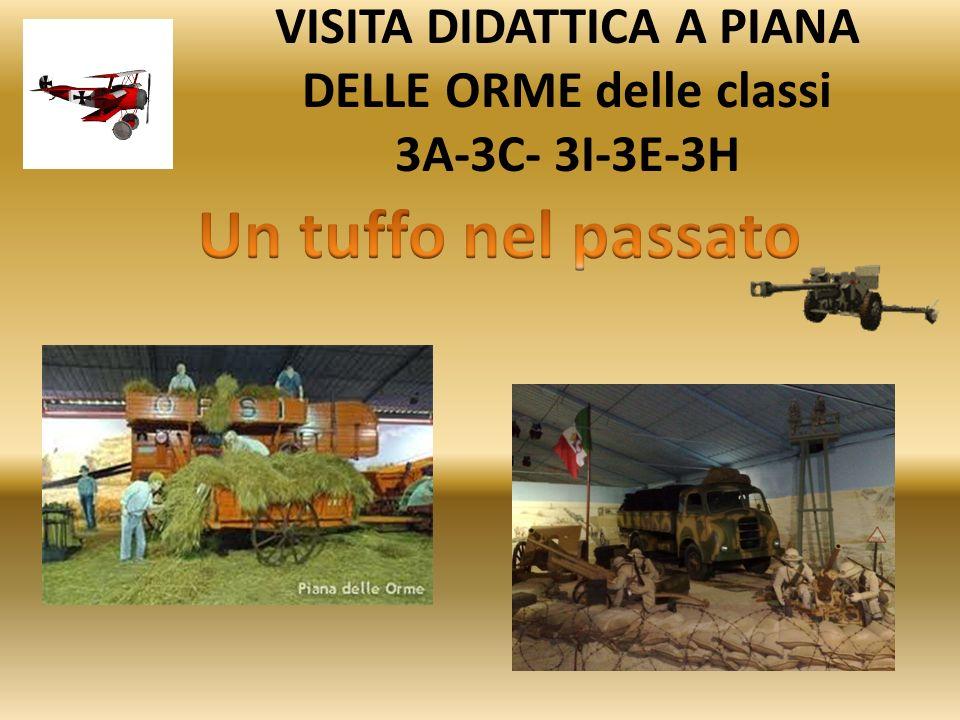 VISITA DIDATTICA A PIANA DELLE ORME delle classi 3A-3C- 3I-3E-3H