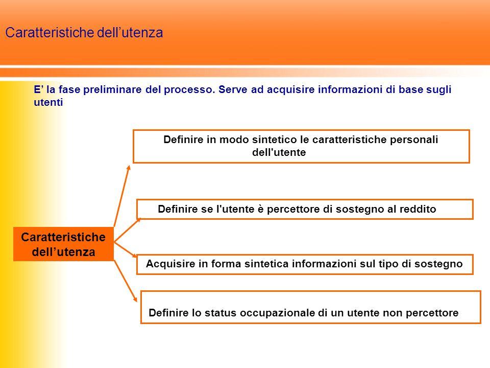 Definire in modo sintetico le caratteristiche personali dell utente Caratteristiche dellutenza Definire se l utente è percettore di sostegno al reddito Acquisire in forma sintetica informazioni sul tipo di sostegno Definire lo status occupazionale di un utente non percettore E la fase preliminare del processo.