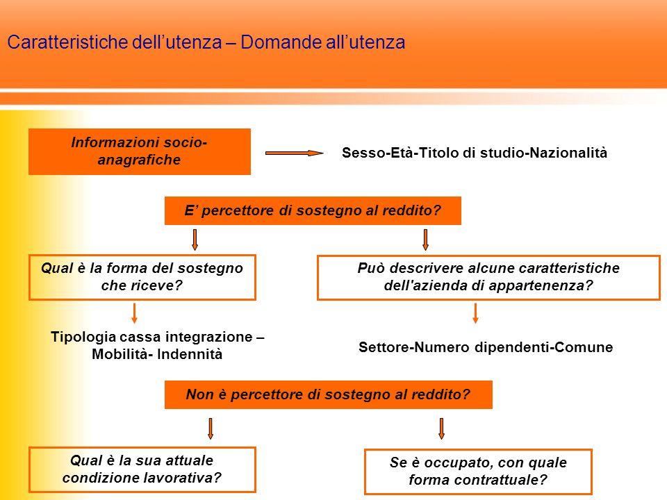 Caratteristiche dellutenza – Domande allutenza Informazioni socio- anagrafiche E percettore di sostegno al reddito.
