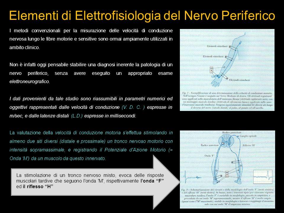 I metodi convenzionali per la misurazione delle velocità di conduzione nervosa lungo le fibre motorie e sensitive sono ormai ampiamente utilizzati in ambito clinico.
