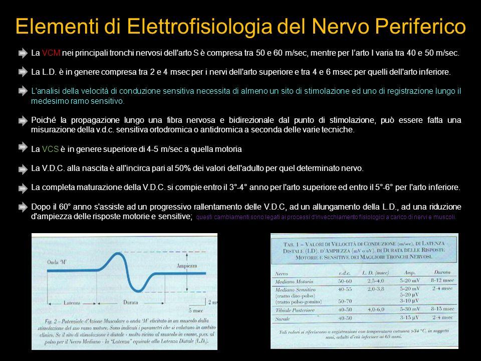 La VCM nei principali tronchi nervosi dell arto S è compresa tra 50 e 60 m/sec, mentre per larto I varia tra 40 e 50 m/sec.