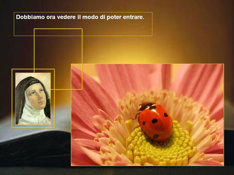 al centro, in mezzo a tutte, vi è la stanza principale, quella dove si svolgono le cose di grande segretezza tra Dio e l'anima ».