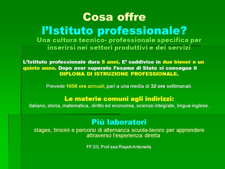 Cosa offre lIstituto professionale? Una cultura tecnico- professionale specifica per inserirsi nei settori produttivi e dei servizi LIstituto professi