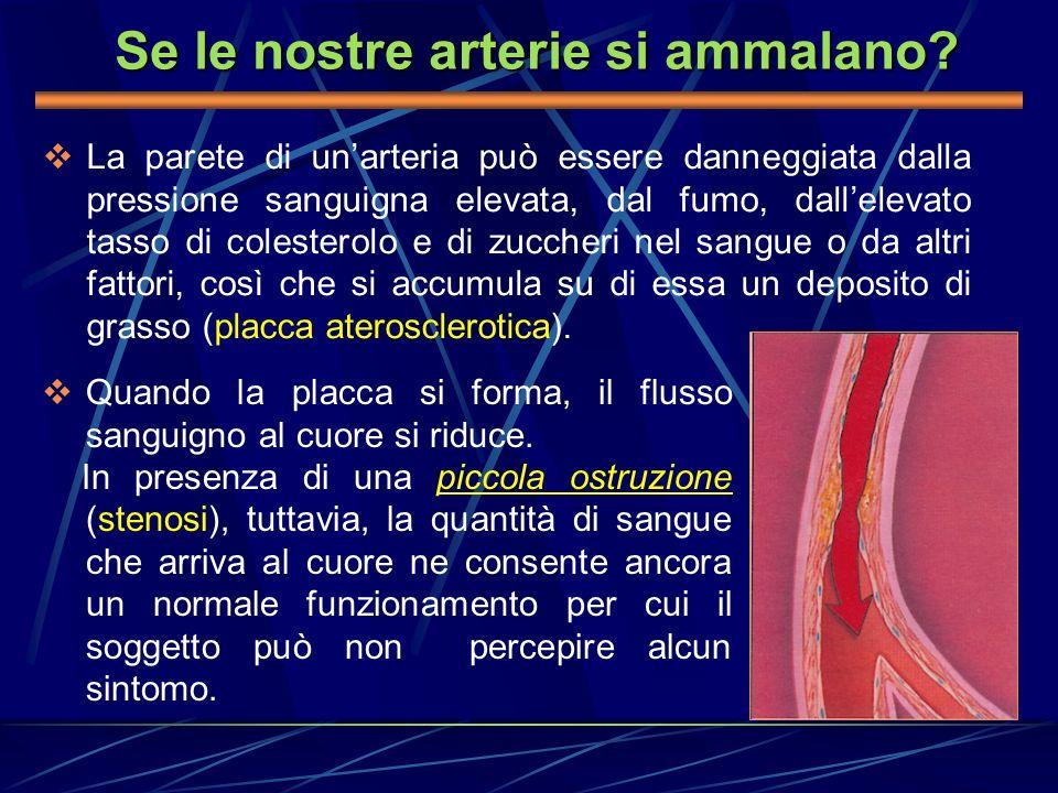 Se le nostre arterie si ammalano? La parete di unarteria può essere danneggiata dalla pressione sanguigna elevata, dal fumo, dallelevato tasso di cole